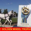 Golden Wheel Trophy looks for their Winner in Altenfelden 2009